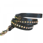 Black Diamond Leash